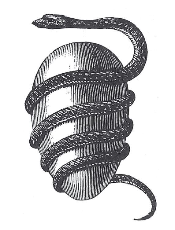 1-Egg and snake